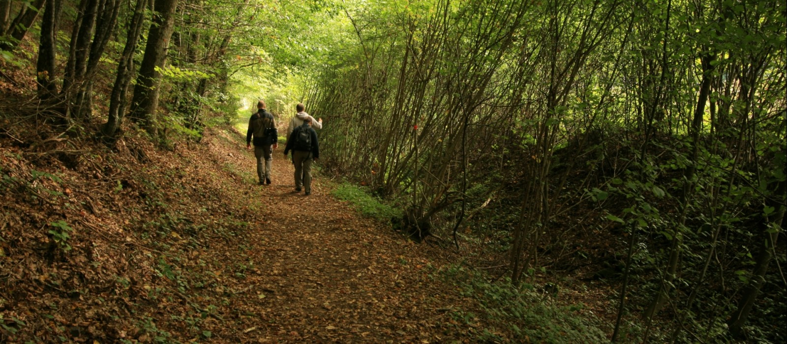 Wandern - Camping Kautenbach